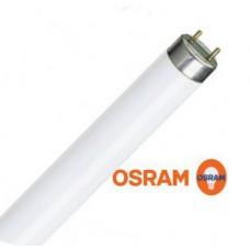 Люминесцентная лампа OSRAM L18W/765 G13